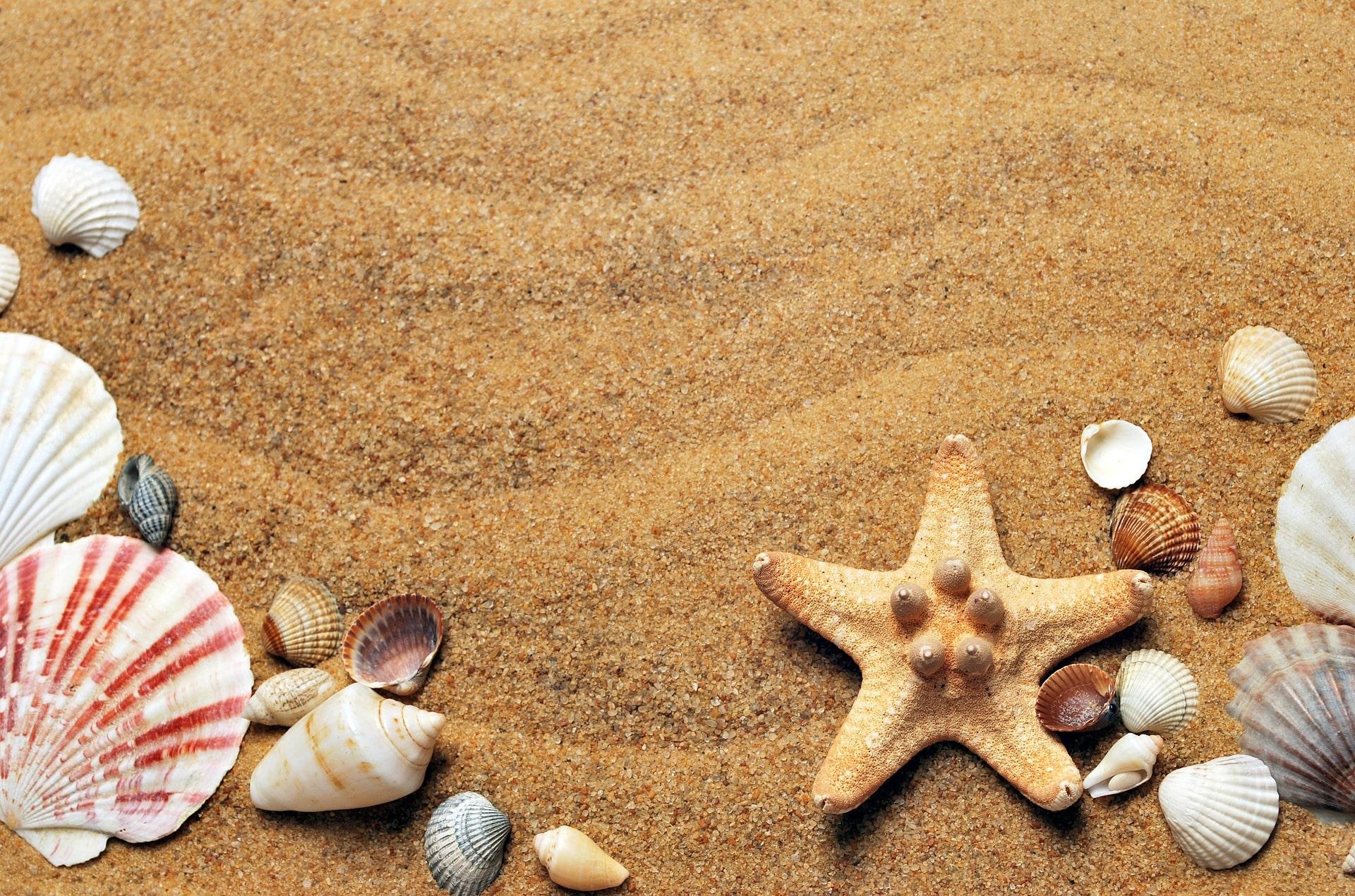 Endlich Sommerferien – aber was unternehmen?